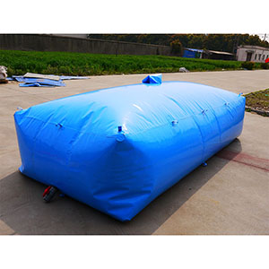 oil storage sac